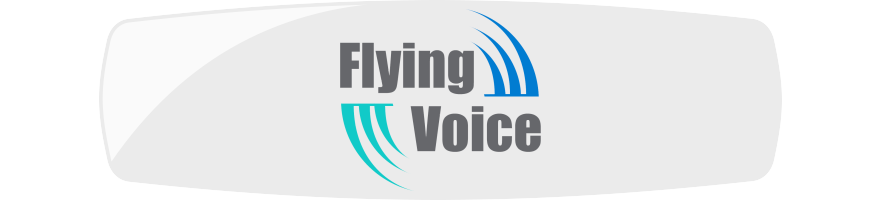 FLYING VOICE